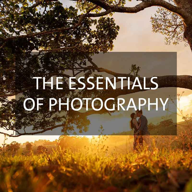 The Essentials of Photography